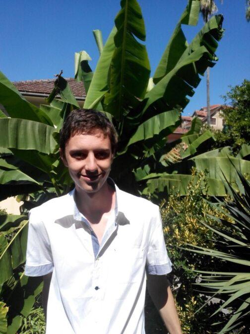 Банановое дерево в Герцег-Нови