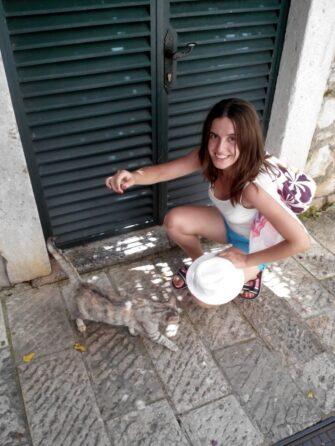 Кошки в Герцег-Нови
