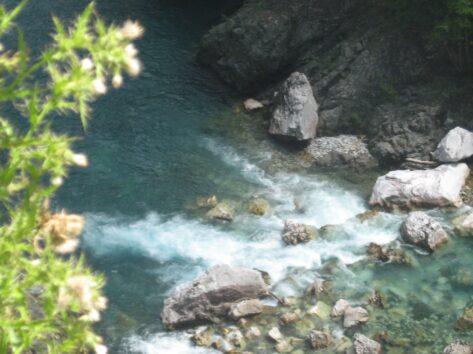 Река Тара на излучине