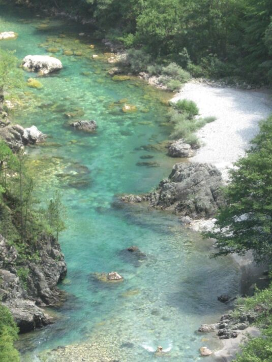 Прозрачная вода реки Тара