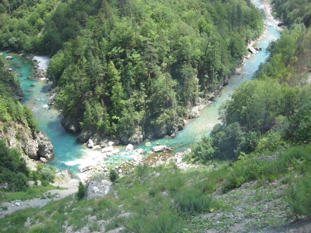 Река Тара с высоты птичьего полета