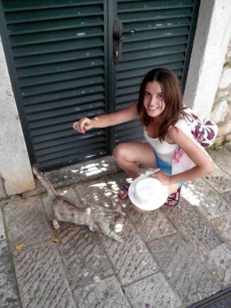 Кішка в місті Цетіньє