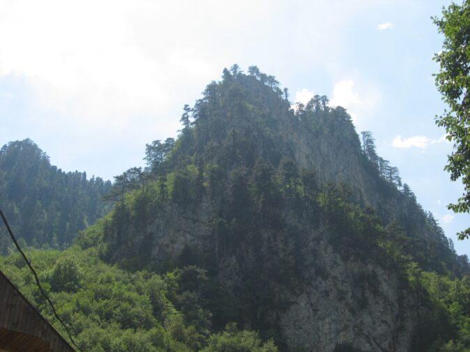 Природа в каньйоні річки Тара