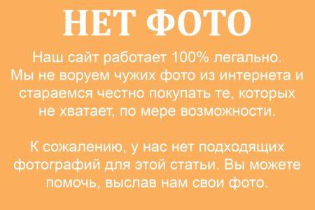 Ікона із зображенням Василя Острозького