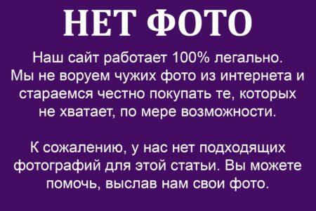 Ковчег з мощами Святого Василя Острозького.
