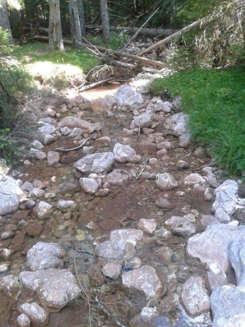 Горная речка в Дурмиторе