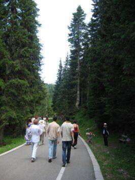 Дорога до Чорного озера в парку Дурмітор