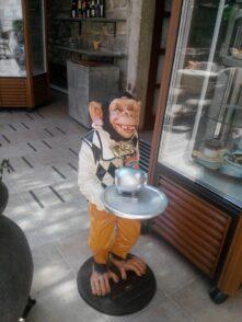 Мартышка-официант в Старом городе