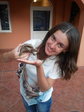 Черепахи в Чорногорії