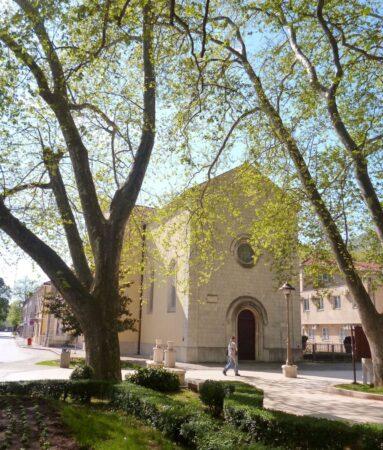 Кафедральный собор Требиньско-Мрканьского епископата