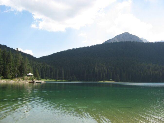 Озеро в Дурміторі - природа і ліс