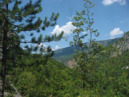 Природа, флора і фауна в Чорногорії