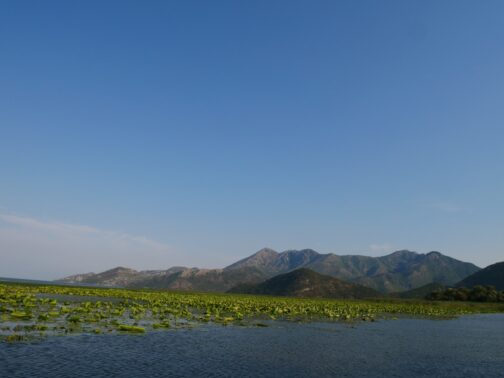 Пейзажи Скадарского озера на кораблике