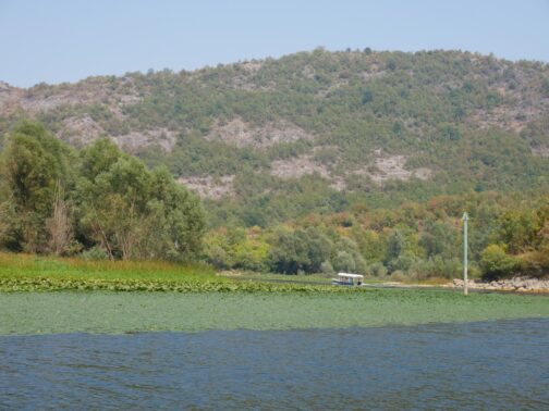 Прогулка по реке Црноевича
