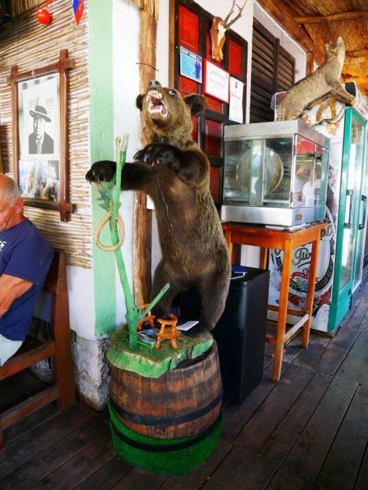 Интерьер ресторана на рафтинге, Черногория