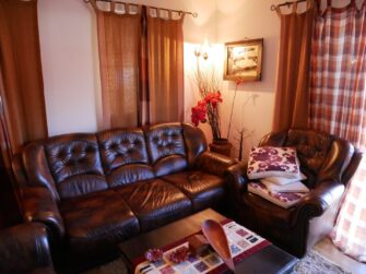 Вітальня з шкіряними диванами