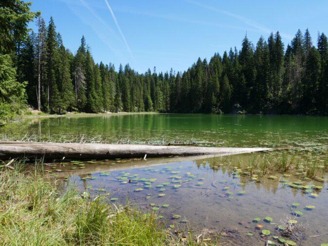 Змеиное озеро в Черногории