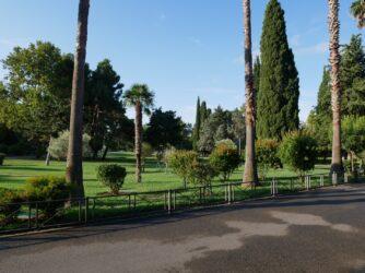 Зелень и парки в Будве