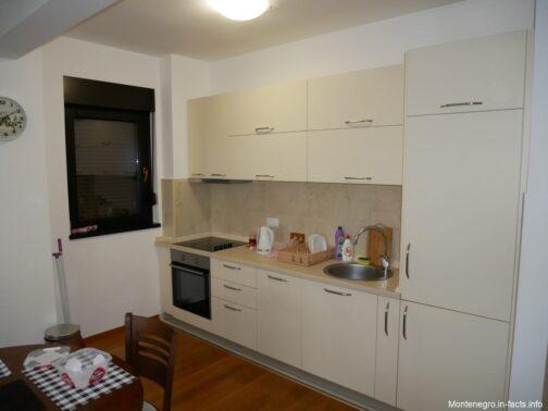 Кухня в снятых самостоятельно апартаментах