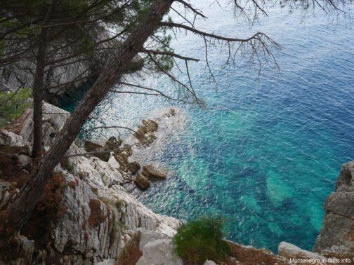 Море рядом с Петровацем